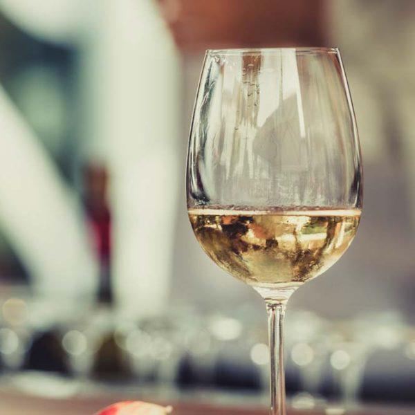 wine-surya